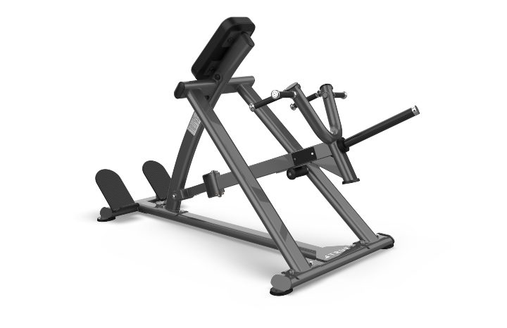 TRUE Fitness XFW5500 Seated Lever Row Bench