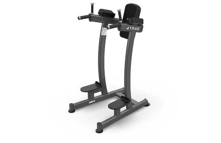 TRUE Fitness XFW6400 Vertical Knee Raise Dip Station