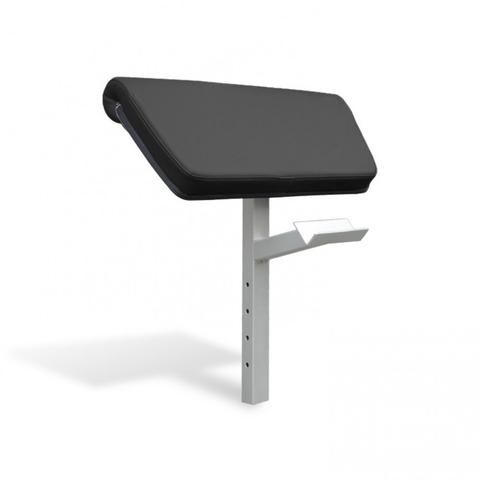 Vo3 Impulse Series Arm Curl Attachment for Bench
