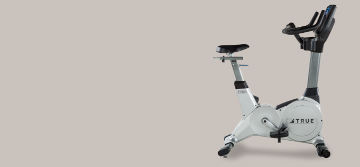 TRUE ES900 Upright Bike Cycle